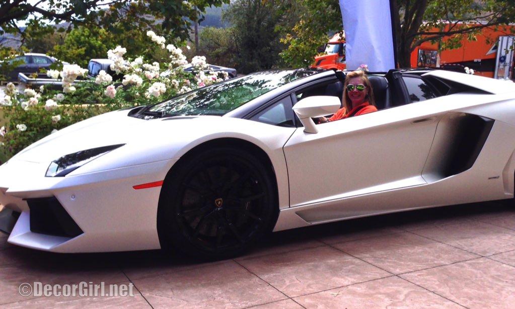 Photo A Doors On Lamborghini Aventatdor